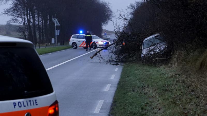 Auto knalt tegen boom op N502