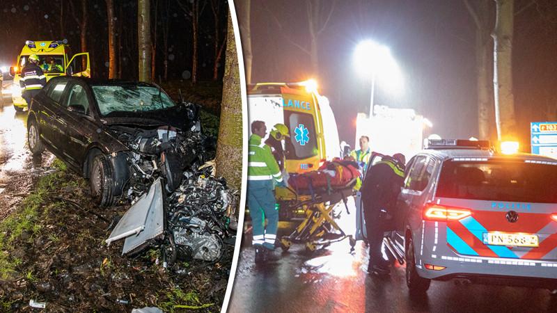 Automobilist gewond bij frontale botsing op boom in recreatiegebied Spaarnwoude.