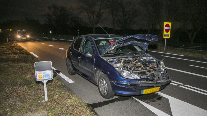 Weer hert aangereden door auto in Overveen.