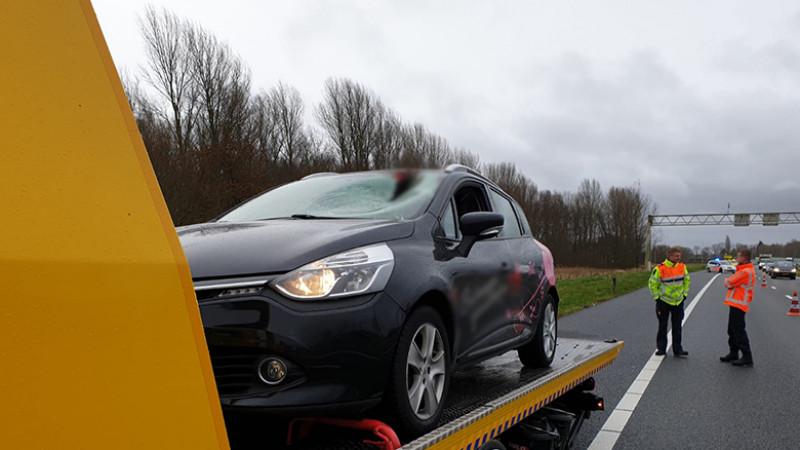 Automobiliste gewond na botsing met gans op A7.