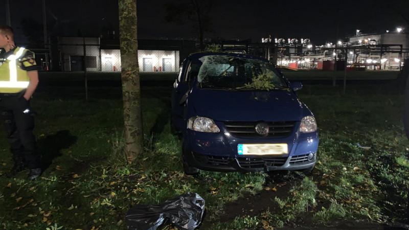 Bijrijder gewond bij botsing tegen boom in Alkmaar.