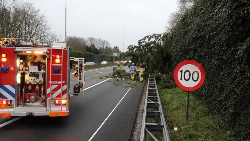 Bomen vallen op snelweg Laren